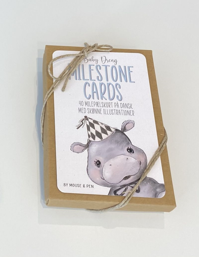 Mouse & Pen - Milestone Cards, Dreng
